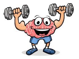 Brain-clip-art